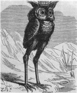 STOLAS - Appears as an owl or as a man who teaches astronomy, the properties of plants, and the worth of precious stones.