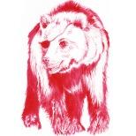 Ink Drawing of a bear by Kay De Garay